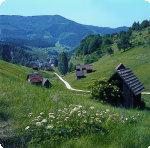 Quelle: Stadt Gernsbach / Schwarzwaldtourismus